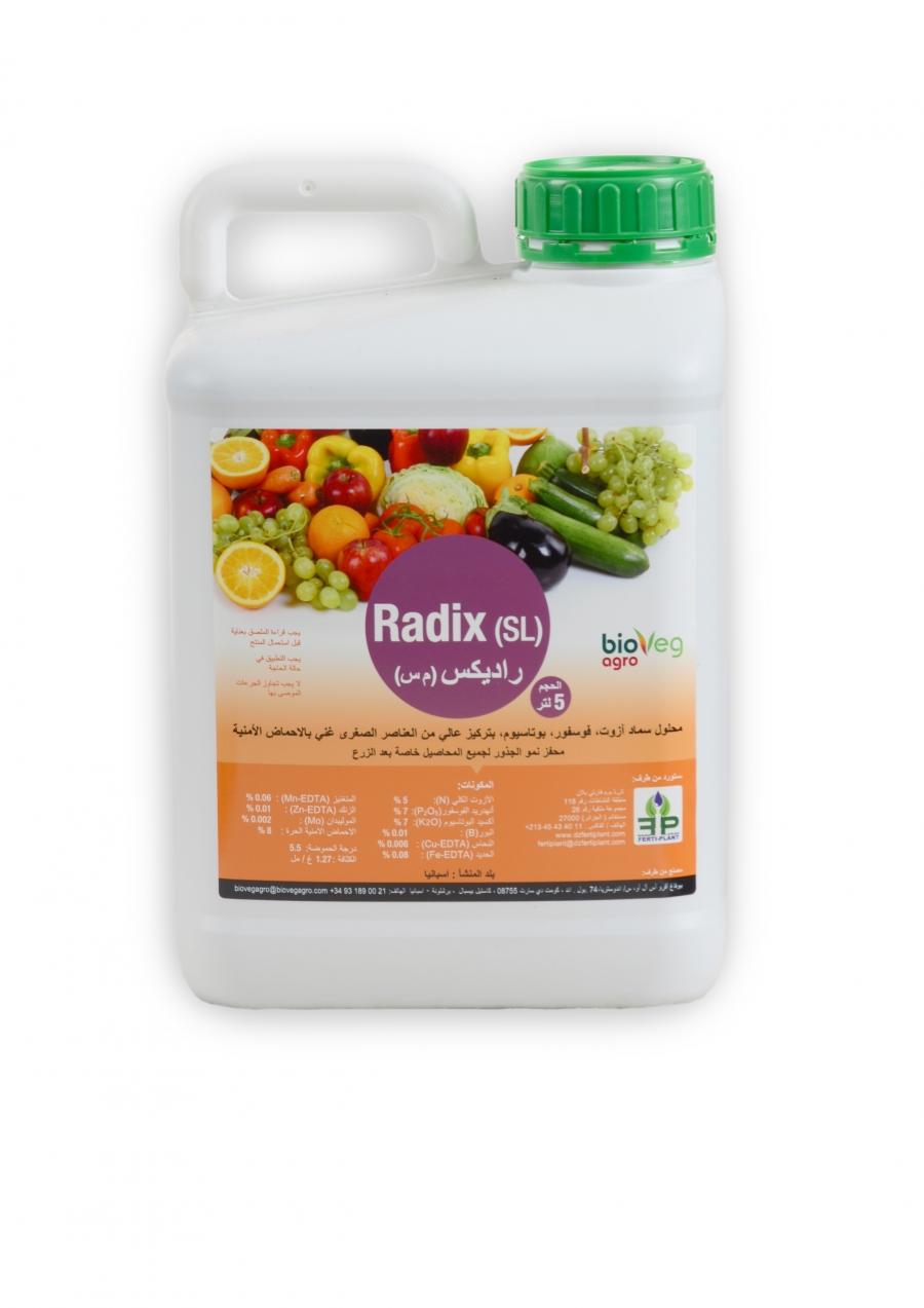 Radix (SL)